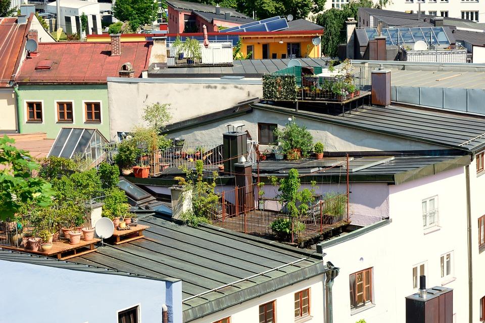 roof-terrace-garden